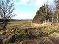 Field edge near Gunnerton - geograph.org.uk - 1175536.jpg