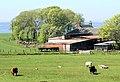 Figgatoch Farm, Isle of Cumbrae - geograph.org.uk - 426962.jpg