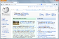 Firefox 19 on Windows.png