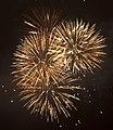Fireworks 5 (5336915646).jpg