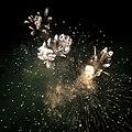 Fireworks Birmingham New Year 2011 p (5312805841).jpg