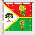 Flag vladimir s.JPG