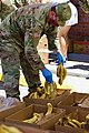 Florida National Guard (49843397447).jpg