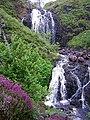 Flowerdale Falls - geograph.org.uk - 216823.jpg