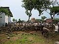 Food Aid Rwanda.jpeg