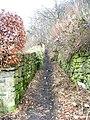 Footpath - Bankfoot - geograph.org.uk - 1142015.jpg