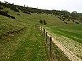 Footpath in North Dale - geograph.org.uk - 1804241.jpg