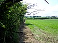 Footpath near No Parish Farm - geograph.org.uk - 1449863.jpg