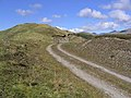 Forestry road - geograph.org.uk - 435862.jpg