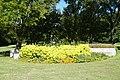 Fort Worth Botanic Garden October 2019 13 (North Vista).jpg