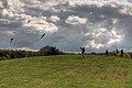 Friedenswald-Koeln-Drachen.jpg