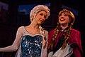 Frozen at Fantasy Faire - 17296565891.jpg