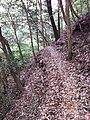 Fukiaicho, Chuo Ward, Kobe, Hyogo Prefecture 651-0058, Japan - panoramio (26).jpg