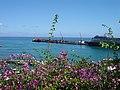 Funchal ( Portugal ) (33114348).jpg