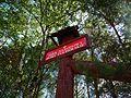 Funka, National Park Bory Tucholskie.jpg