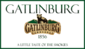 GATLINBURG TN PNG 72.png