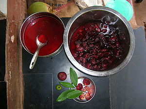 Garcinia indica - The vessel on the left contains syrup which is obtained from the vessel containing kokum rinds, on the right. The syrup is used to make kokum sherbet