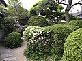 Garden of birthplace of Takasugi Shinsaku.jpg