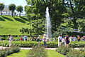 Gardens of Peterhof IMG 4137.JPG