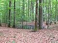 Garnberg Doline Löhlein 01.JPG