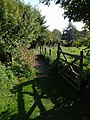 Gate from Millennium Green, Ideford - geograph.org.uk - 987863.jpg
