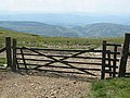 Gate on county boundary - geograph.org.uk - 463505.jpg