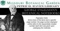 George Engelmann -botanical notebook 40 - Juncus (IA mobot31753003958722).pdf