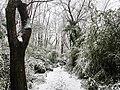 Georgia snow IMG 4547 (38910570752).jpg