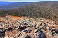Gfp-missouri-taum-sauk-mountain-state-park-slippery-rock-field.jpg