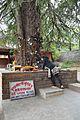 Ghatothkach Shrine - Manali 2014-05-11 2714.JPG