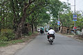 Ghosh Para Road - Palta - North 24 Parganas 2012-04-11 9547.JPG