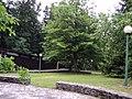 Giardino - panoramio (2).jpg