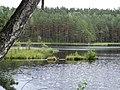 Gmina Piecki, Poland - panoramio (96).jpg