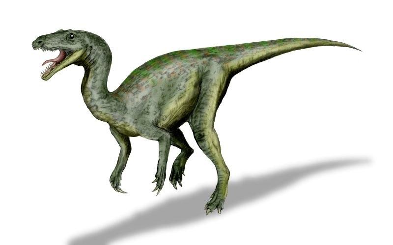 Gojirasaurus BW