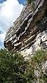 Gorges de l'Ardèche entre Lanas et Balazuc 12.jpg