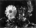 Goudsbloemen, Bestanddeelnr 252-1520.jpg