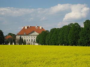 Dornava castle near Ptuj, Slovenia.