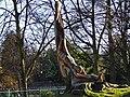 Great Malvern - panoramio (21).jpg