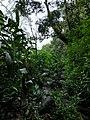 Great outdoors 03.jpg