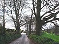 Greenway Road, Hook Bottom - geograph.org.uk - 368962.jpg