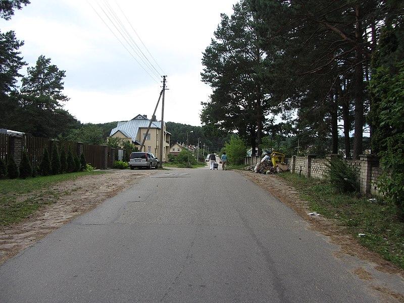 File:Grigiškės, Lithuania - panoramio (125).jpg