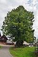 Groß-Schneidhofer, Falkenstein 112 (05).jpg