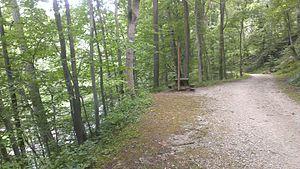 Gwynns Falls Trail - Westbound, approaching the Windsor Mill Road trailhead