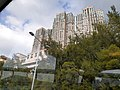 HK 城巴 CityBus 962B view 荃灣區 Tsuen Wan District 青山公路 Castle Peak Road November 2019 SS2 54.jpg