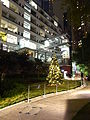 HK Sheung Wan PMQ terrace garden night Dec-2015 DSC.JPG