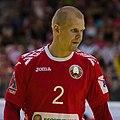Handball-WM-Qualifikation AUT-BLR 052.jpg