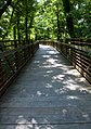 Harpeth river greenway at Old Harding pike. - panoramio.jpg