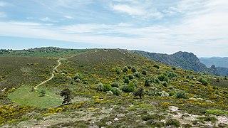 Haut-Languedoc- May 2020 a6.jpg