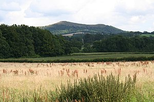 Meadow - Image: Hay Meadow geograph.org.uk 513892