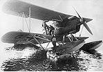 Heinkel He 60 fin.jpg